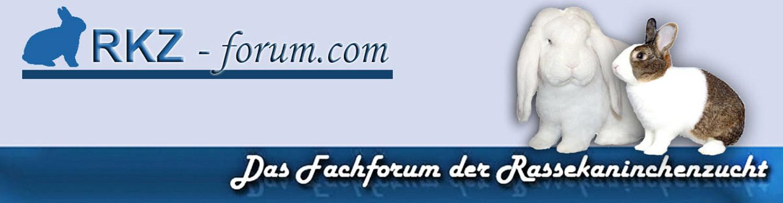 Rassekaninchenzuchtforum Kaninchenforum Forum Kaninchen